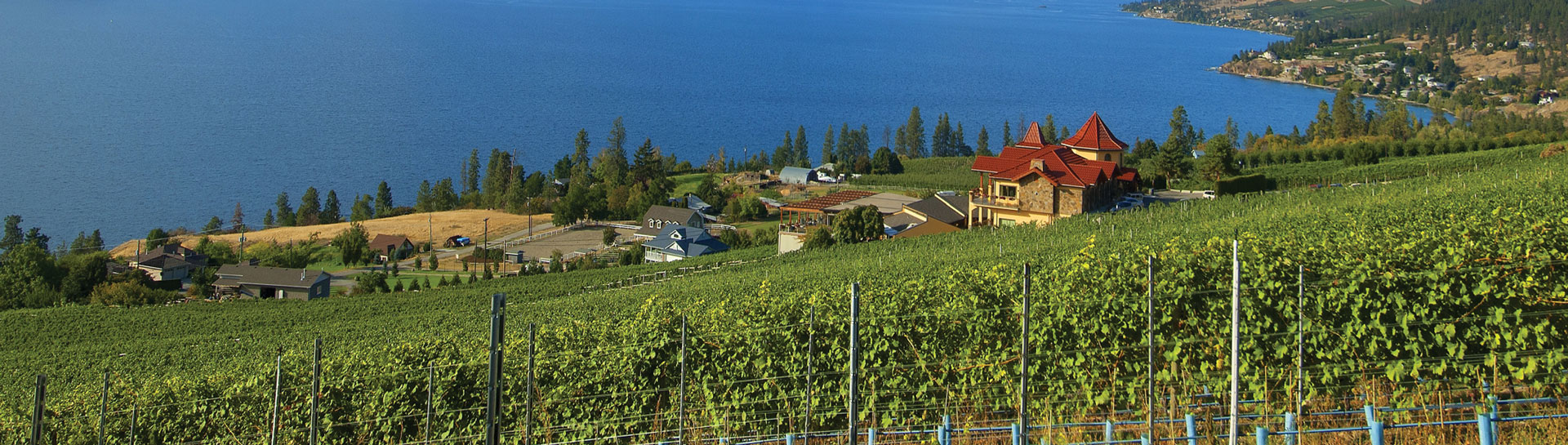 Okanagan Vernon BC Wineries