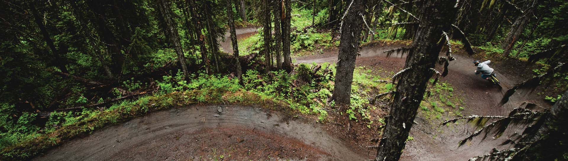 person biking on trail through woods - Photo Credit to SilverStar